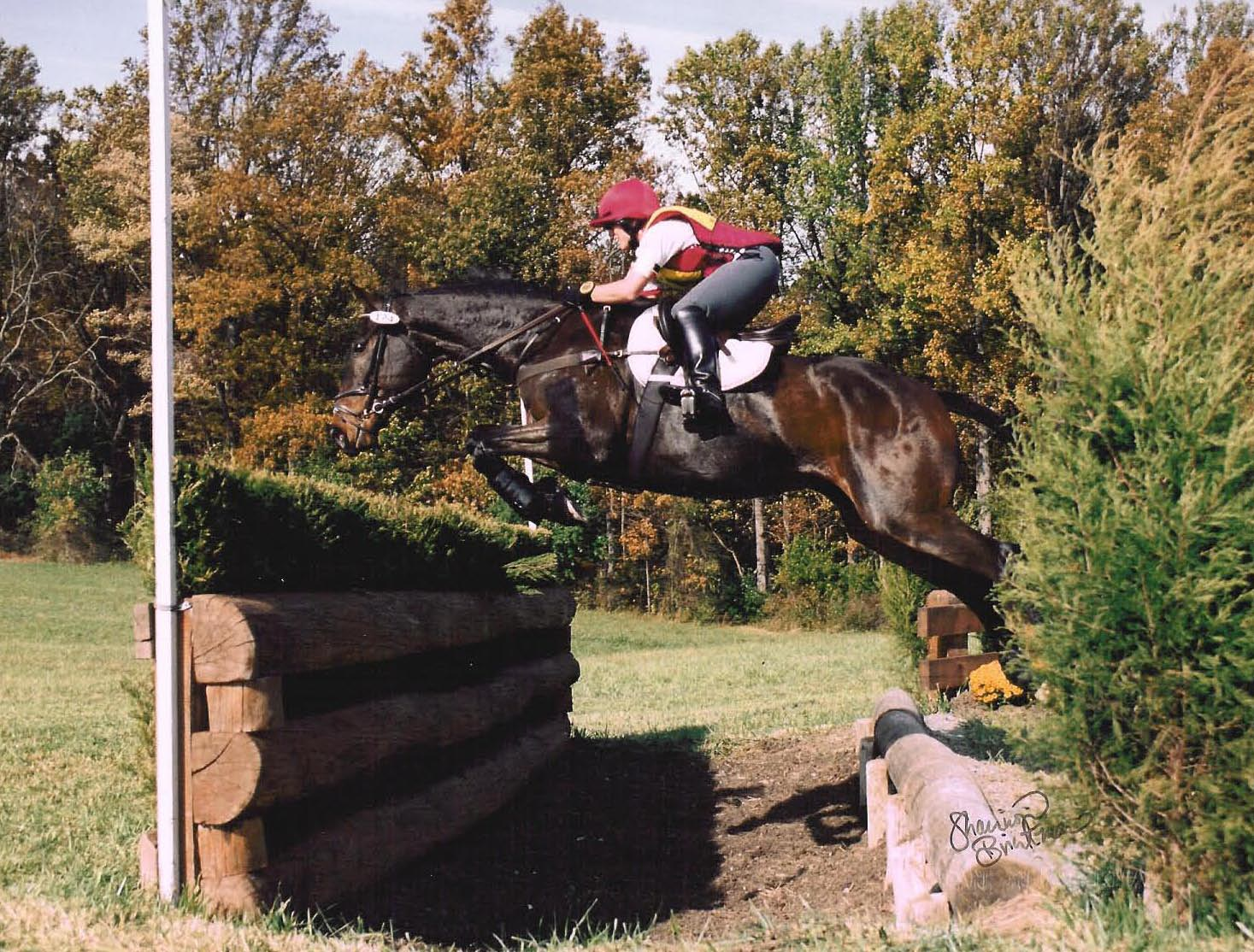 Our Resident Expert - My Virtual Eventing Coach