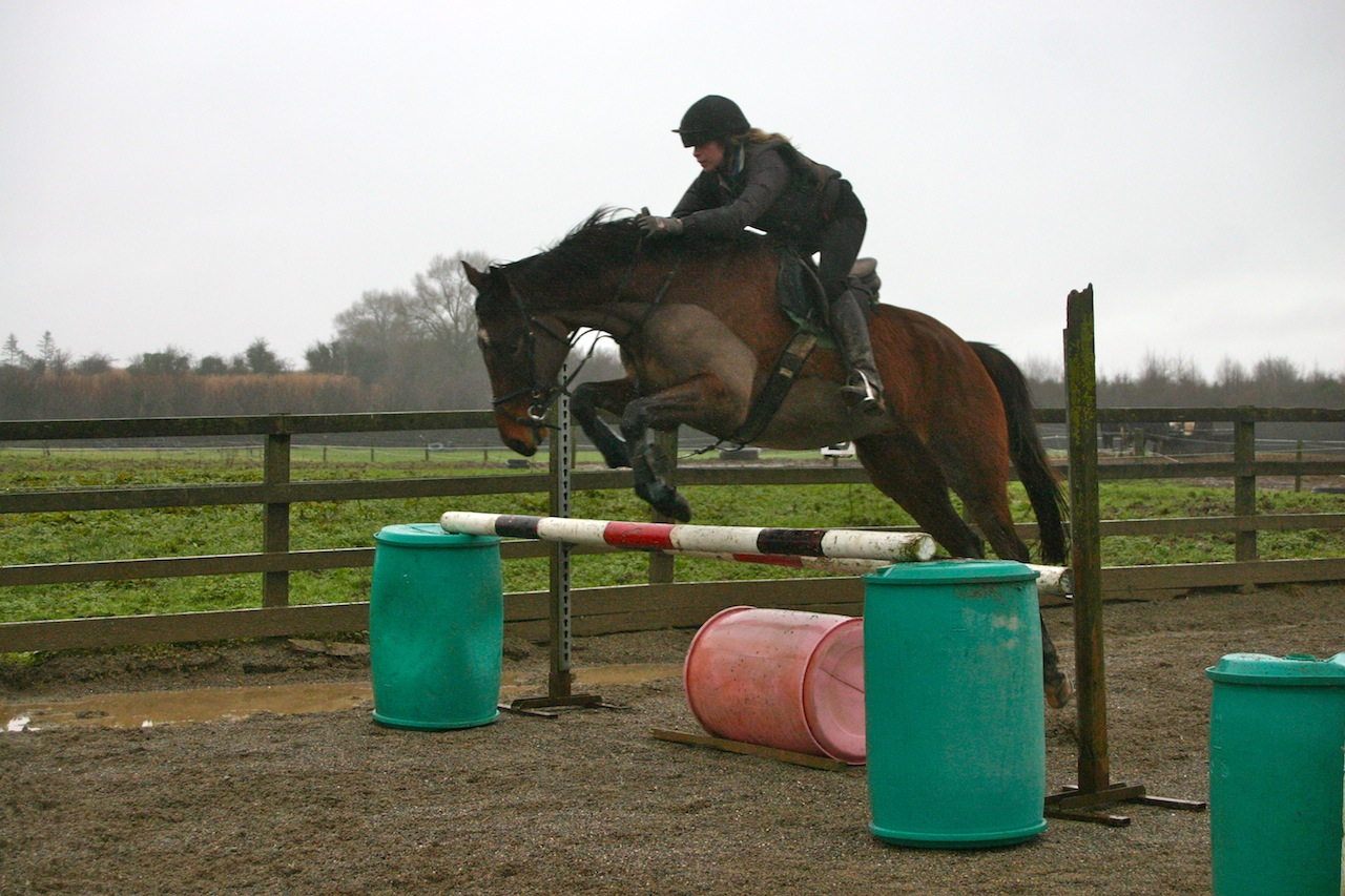 eventing_photo_53