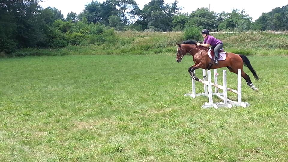 eventing_photo_48
