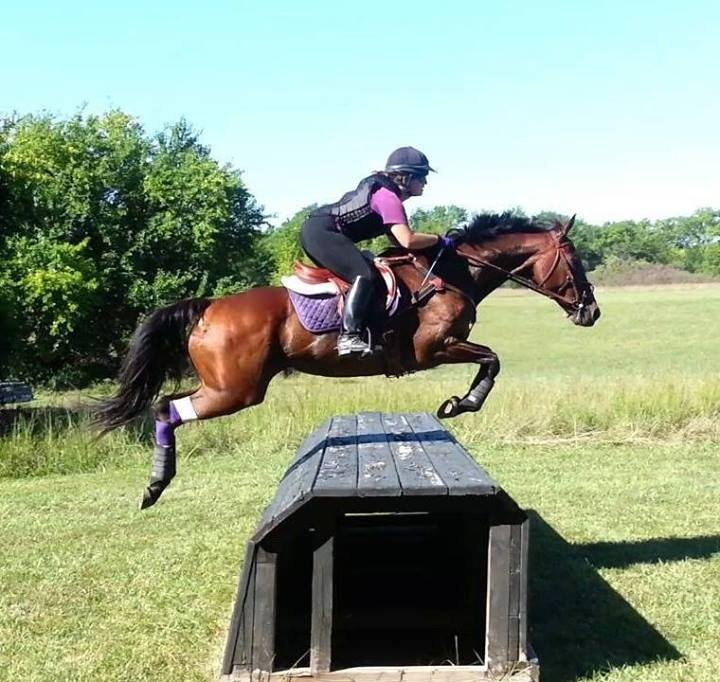 eventing_photo_50