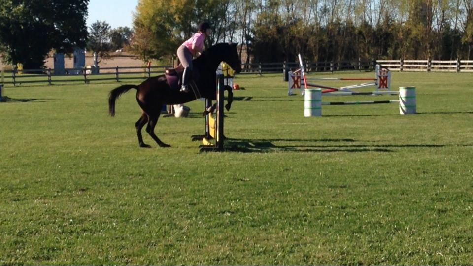 eventing_photo_51