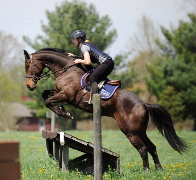 eventing-question-312-and-photo-76-horse-gets-in-too-close-and-hangs-knees-over-jumps
