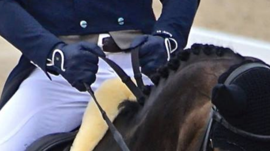 Rider hands | Eventing