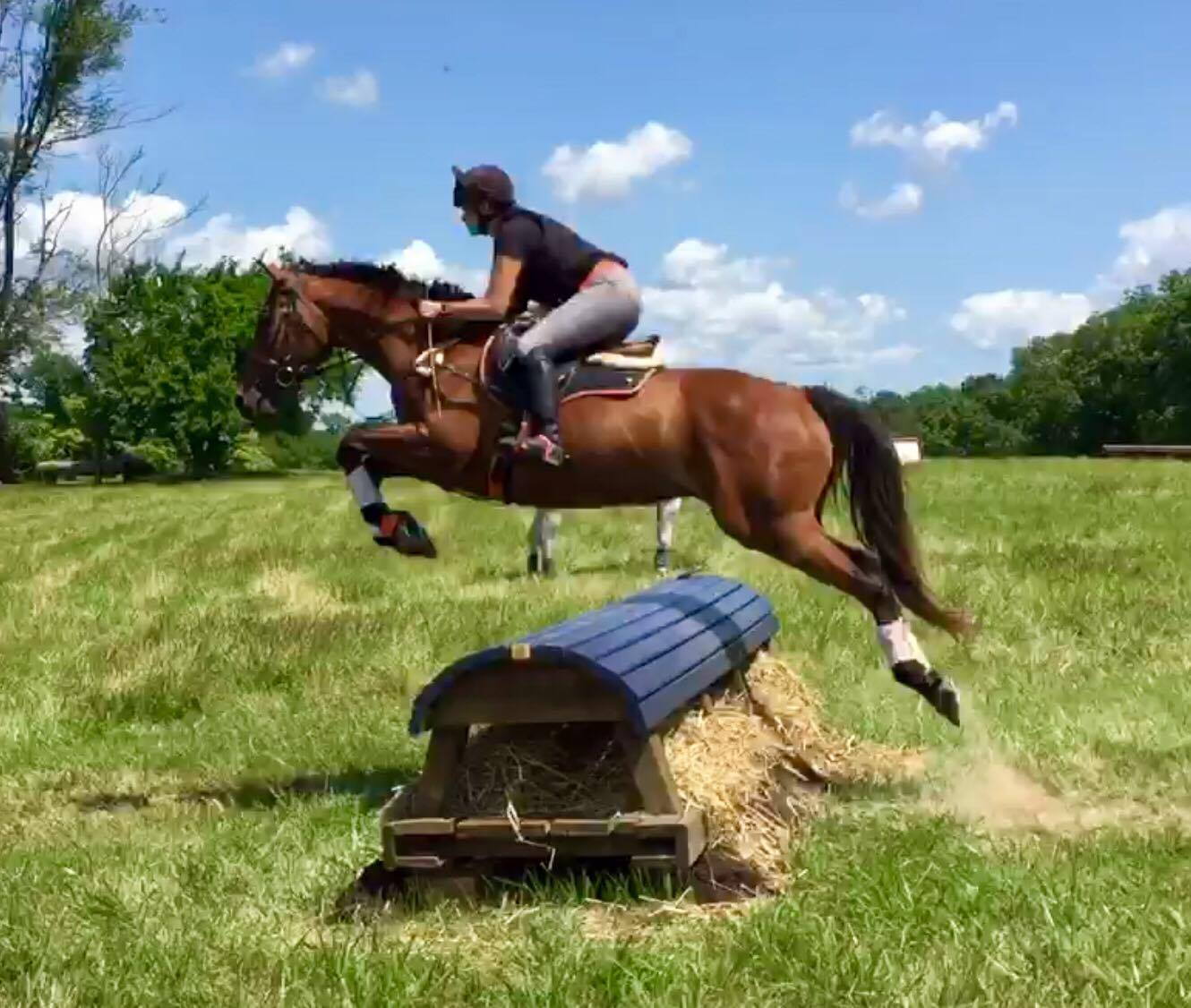 eventing-photo-77