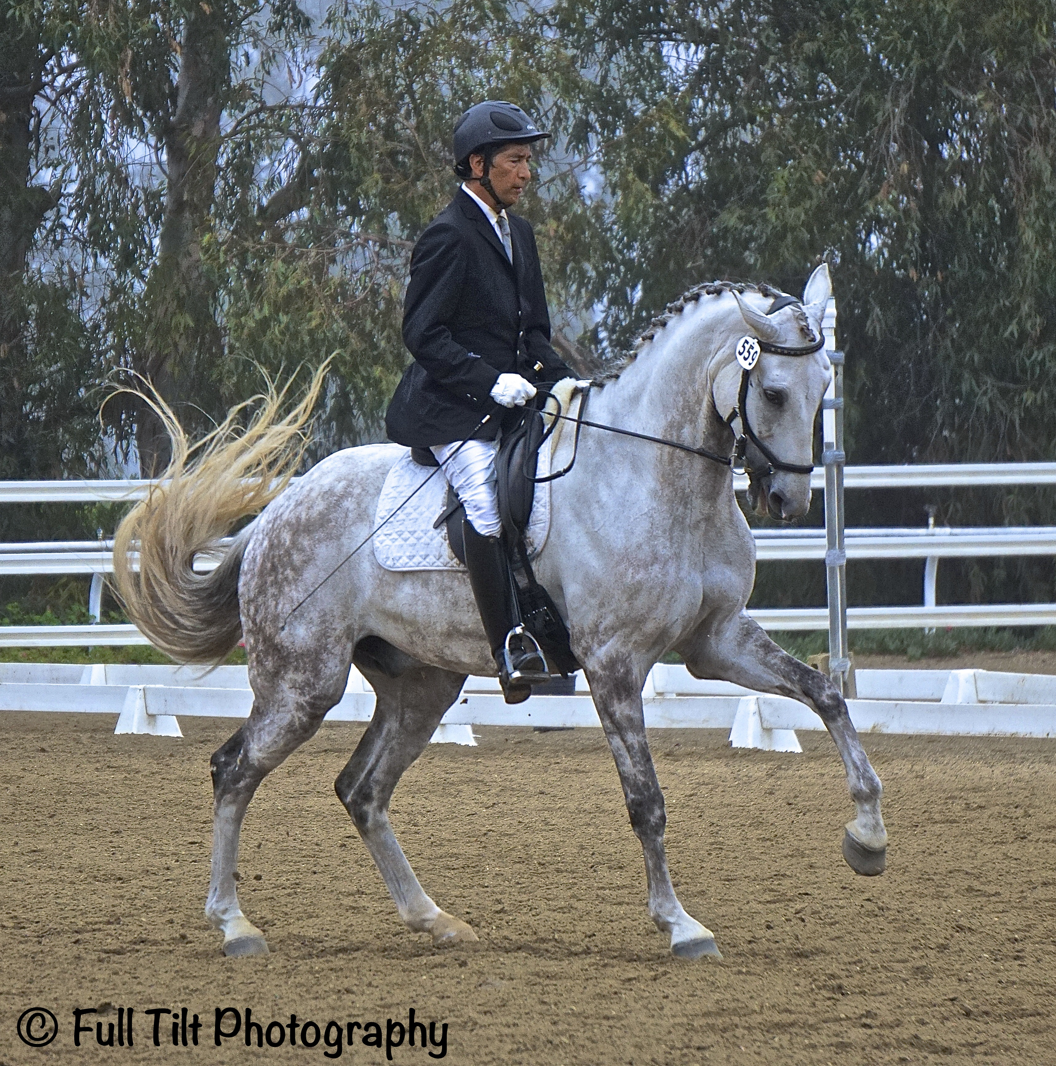 Dressage canter