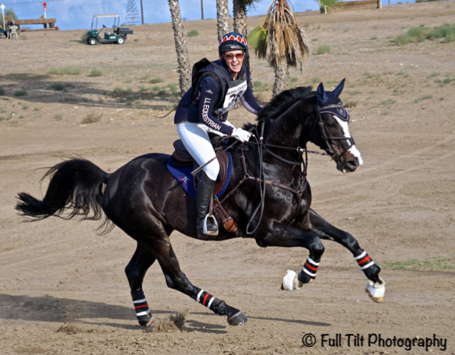 TEST-of-your-horses-rideability-adjustability
